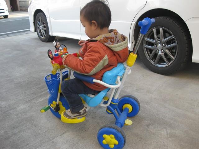 コラム5世界がひろがる三輪車